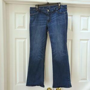 WHBM bootcut medium wash stretch petite jeans, 14
